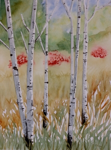 Birch Trees by Barb Ames