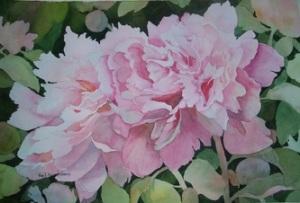 Roses by Gail Turner Sears