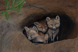 Three Young Foxes by Kain Shannon