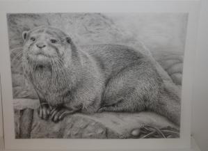 Otter by Katerina Mayenfels