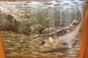 Fall COHO by Casey Braam