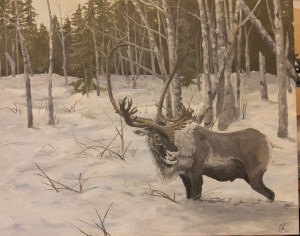 rangifer-tarandus-cariboo-by-casey-braam