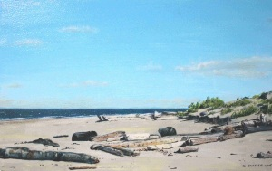 Driftwood Near White Creek by Geoff Braiser Acrylic on Board (11 1/2 x 19) $125